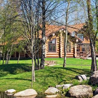 На фото: одноэтажный загородный дом из бревна в окружении молодых деревьев, перед домом - газон