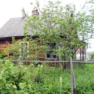 На фото: одноэтажный деревянный садовый дом с верандой, кровля - шифер, участок огорожен забором из сетки рабица, на участке - садовые посадки