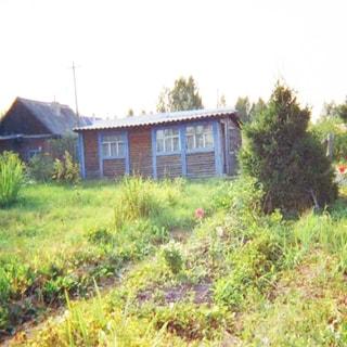 На фото: земельный участок, разработанные грядки, садовые посадки, елка, деревянный хозблок с окнами, кровля - шифер, на заднем плане - постройки соседних участков