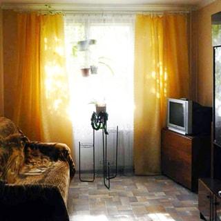 На фото: часть помещения жилой комнаты, одно окно, перед окном - проволочная стойка под комнатные растения, слева у стены - мягкий диван, справа у противоположной стены - стол с телевизором, сервант, полы - линолеум