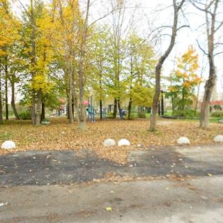 На фото: благоустроенная придомовая территория, газон, деревья, пешеходные дорожки, садовые скамейки, обустроенная детская площадка, проезд асфальтирован