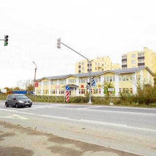 На фото: проезжая часть дороги, две полосы в каждом направлении, выделенная полоса для общественного транспорта, регулируемый пешеходный переход, за дорогой - двухэтажное здание торгового центра, за ним видны многоэтажные жилые дома