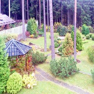 На фото: вид на придомовой участок с высоты второго этажа, на участке - ландшафтный дизайн, мощеные дорожки, газон, декоративные растения, корабельные сосны, беседка, слева - деревянный забор, за забором - соседний участок, на дальнем плане - металлическое сетчатое ограждение, за ним - хвойный лес