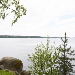 На фото: вид с берега на обширную водную гладь, берег каменистый, небольшие деревья, далеко на противоположном берегу - лесной массив