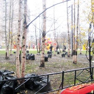 На фото: часть придомовой территории, огороженный газон, деревья, на дальнем плане - обустроенная детская площадка - детский городок, горки, качели, турники, на газоне - мешки для сбора опавшей листвы