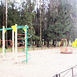 На фото: оборудованная огороженная детская площадка, лестницы, карусель, качели, горка, за площадкой лесополоса, газон, ели, сосны и березы