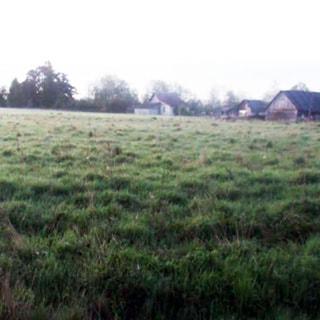 На фото: часть полевого участка с луговой растительностью, участок ровный, небольште кочки, свободный, без построек, не огорожен, на дальнем плане - одноэтажные жилые дома сельского типа и деревья