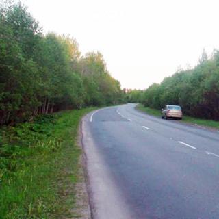 На фото: асфальтированная автомобильная двухполосная дорога с обоченой, слева и спрва за обочиной - лесополоса, кусты, деревья, на правой обочине - припакрованный легковой автомобиль