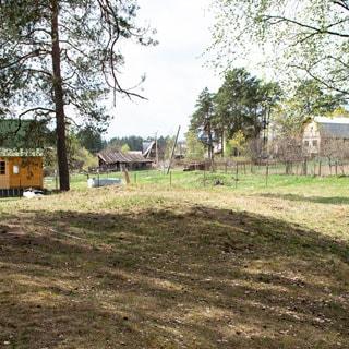 На фото: часть земельного участка, участок ровный с небольшой рельефностью, травяной покров, свободный от кустов, деревьев и построек, не огорожен, на дальнем плане соседние участки, огороженные забором из металлической сетки, дачные и хозяйственные постройки