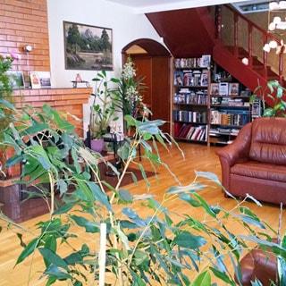На фото: часть помещения жилой комнаты, камин, мягкая мебель, декоративные комнатные растения, книжные стеллажи с книгами, арочный выход в соседнее помещение, лестница на второй этаж
