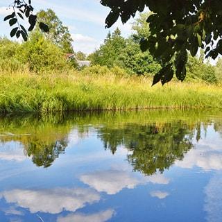 Земельный участок 10 соток ДНП в деревне Рыбицы (Гатчинский, Рождествено) продается. Река Оредеж - 500 м