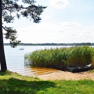 Земельный участок 15 сот ДНП у деревни Ванино Поле (Лужский, Скреблово) продается. Берег озера Вревское