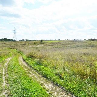 Земельный участок 20 соток ЛПХ в Жабино (Гатчинский) продается. Участок рельефный, подъезд - грунт