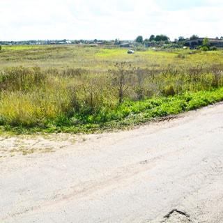 Земельный участок 20 соток ЛПХ в Жабино (Гатчинский) продается. Земли поселений, подъезд - асфальт, грунт