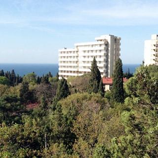 На фото: вид на обширную рощу, за рощей - многоэтажный дом, похожий на дом отдыха или гостиницу, за ним - синее море и голубе небо