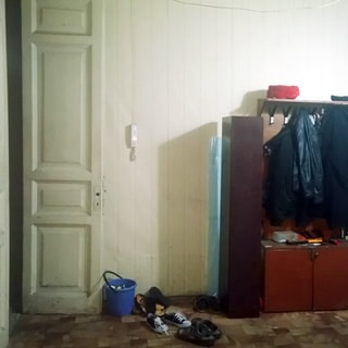 На фото: часть помещения прихожей, слева - входная дверь, на стене - трубка домофона, правее - навесная вешалка для одежды, под ней - тумба для обуви, стены оклеены обоями, полы - линолеум