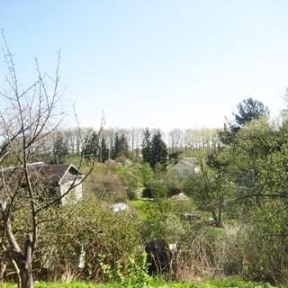 На фото: вид на садоводство с возвышенности, садовые домики, посадки, теплицы, на дальнем плане деревья