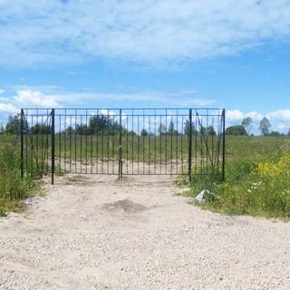 На фото: грунтовая дорога, отсыпанная гравием, упирается в металлические ворота перед въездом на поле, ворота на замке, забор отсутствует