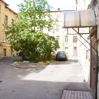 На фото: часть дворовой территории, покрытие - асфальт, есть возможность парковки, устроен небольшой газон с деревьями и кустами, справа - вход в парадную под козырьком, дверь в парадную - металлическая
