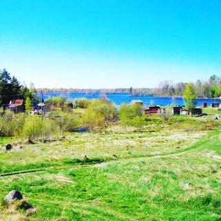 На фото: луговой участок с пологим склоном в сторону озера, на дальнем плане садовые постройки, за ними - водная гладь озера