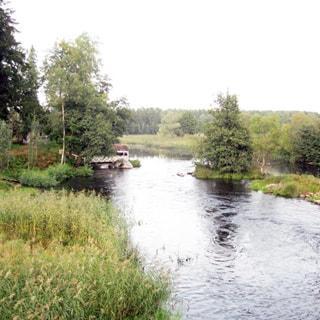 На фото: река Вуокса, на рельефном противоположном берегу - смешанный лес