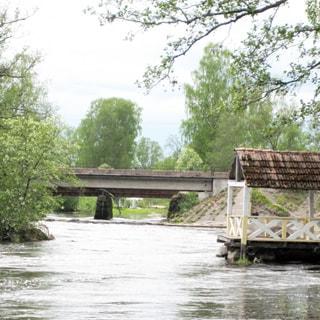 На фото: река Вуокса, вид в сторону поселка Мельниково, беседка на воде, мост через реку