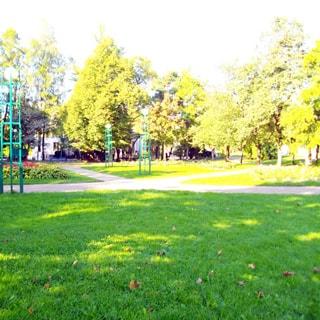 На фото: часть территории сквера, устроены газоны, высажены кустарники и деревья, вымощены пешеходные дорожки