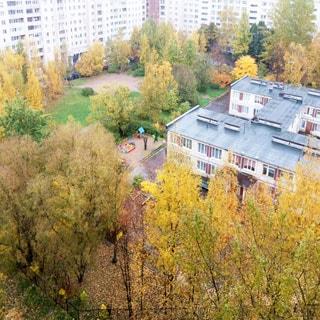 Однокомнатная квартира 39 кв.м на проспекте Просвещения (Выборгский, МО-15) продается. Окна - в большой зеленый двор