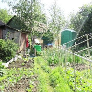 Садовый дом 44 кв.м на 6 сотках в Новом Токсово (Всеволожский) продается. На участке - сарай, туалет, огород, садовые посадки, колодец
