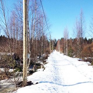 Земельный участок 8 соток САД в поселке Кравцово (Выборгский) продается. Дороги по садоводству - грунт
