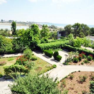 На фото: вид из окна на благоустроенную придомовую территорию с дорожками, газонами, клумбами, садовыми деревьями и кустами, за заднем плане - море