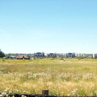 На фото: вид из окна, поле, луговая растительность, на заднем плане одноэтажный частный дом, за ним - коттеджная застройка, за ней - городская застройка