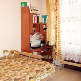 На фото: чистая, светлая комната, одно окно, батарея центрального отопления, диван-кровать, компьютерный столик.