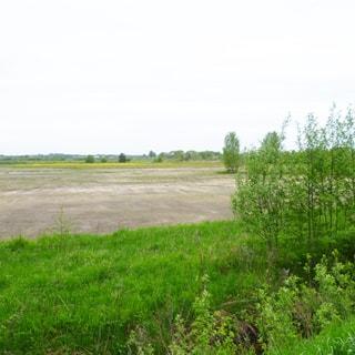 На фото: придорожная сточная канава, за ней - луговая полоса с кустарником и травой, за ней - земельный участок без растительности, выровнен, не огорожен, без построек