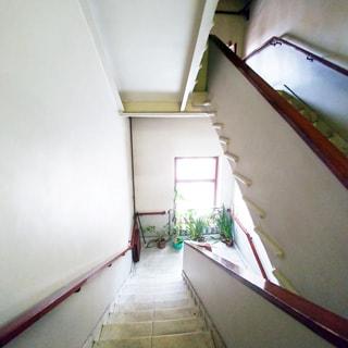 На фото: часть лестничного пролета, деревянные перила с двух сторон, ступени отделаны искусственным мрамором, на межэтажной площадке - окно, у окна - декоративные растения в горшках, слева от окна - батарея центрального отопления